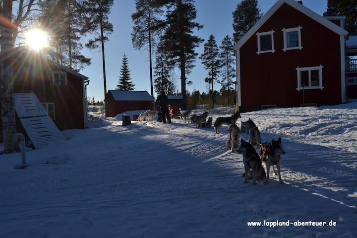 Zimmer auf unserem Hof in Lappland