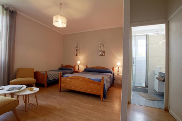 Maison Jauregia - Chambres d'hôtes Abarratia