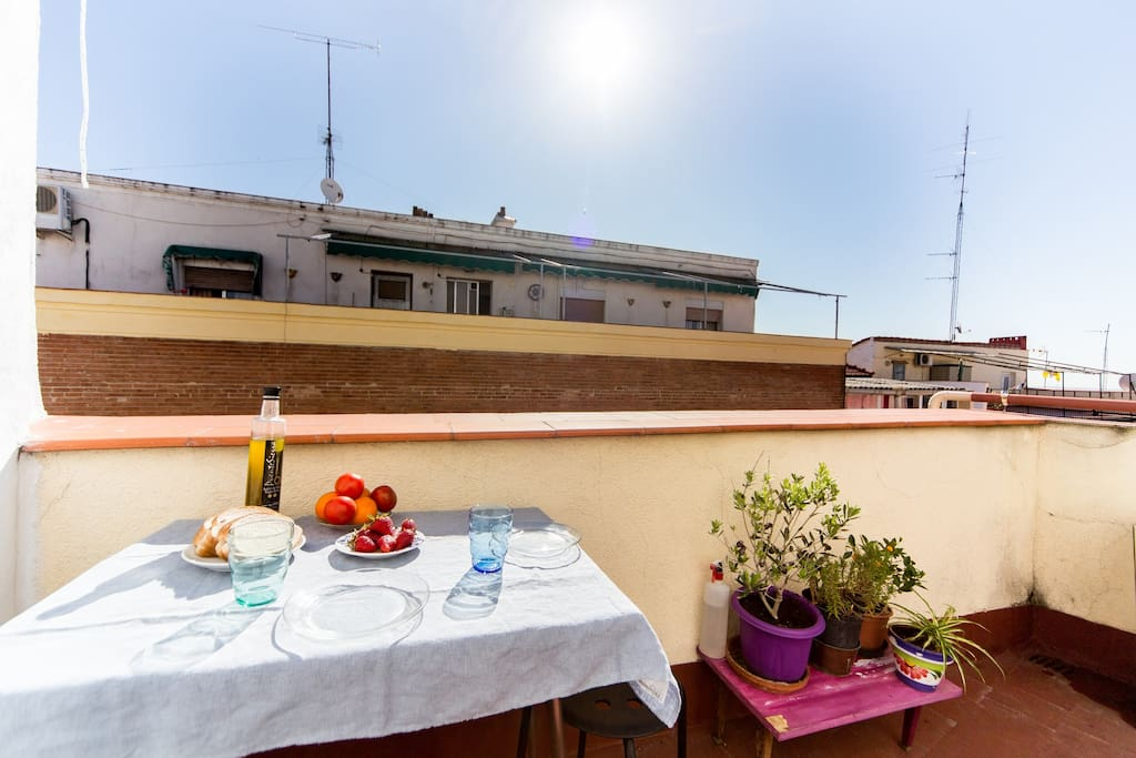 wonderful penthouse with terrace bed and breakfasts for rent in madrid community of madrid spain. Black Bedroom Furniture Sets. Home Design Ideas