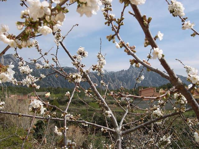 Fantastic view - Montserrat! - El Bruc