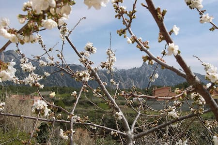Vista fantastica - Montserrat! - El Bruc - Huoneisto