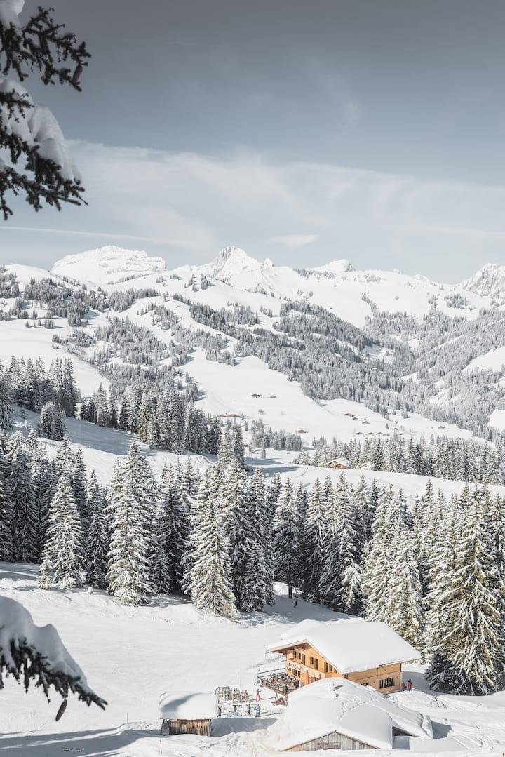 Ferienwohnung im Skigebiet, ruhiger Alpenidylle.