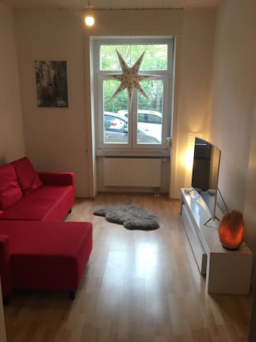 Charming apt in City Center - Wiesbaden - Flat