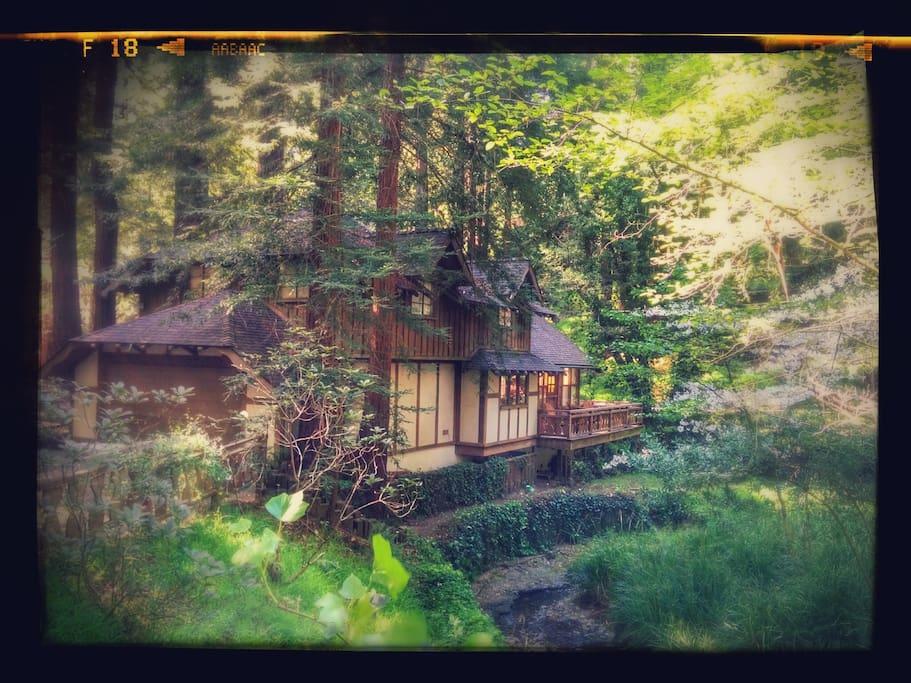 Luxury Creekside Cottage