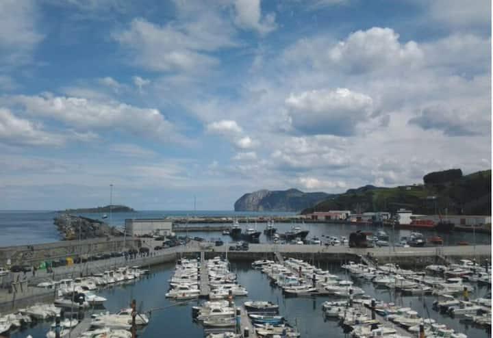 Puerto de Bermeo Apto/2 hab.+salon