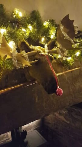 Mervyn the Mousse gets a bauble for his nose ( he's just for fun and not real )