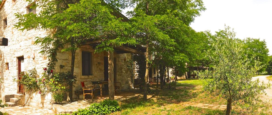 Stancija Mani Istrian Holiday Olive - Žminj - House