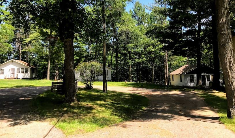 View from the drive way; The Pines is the cabin on the far right.