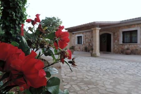 Villa en el corazón de Mallorcath        ET/ 4093