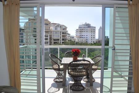 Exclusive Area,Private big bedroom -cozy apartment - Santo Domingo - Lejlighed