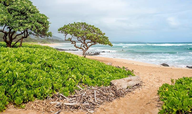 Kauai Beach Villas - Spacious Villa near beaches