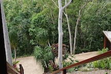 Treetops living with views over the north coast