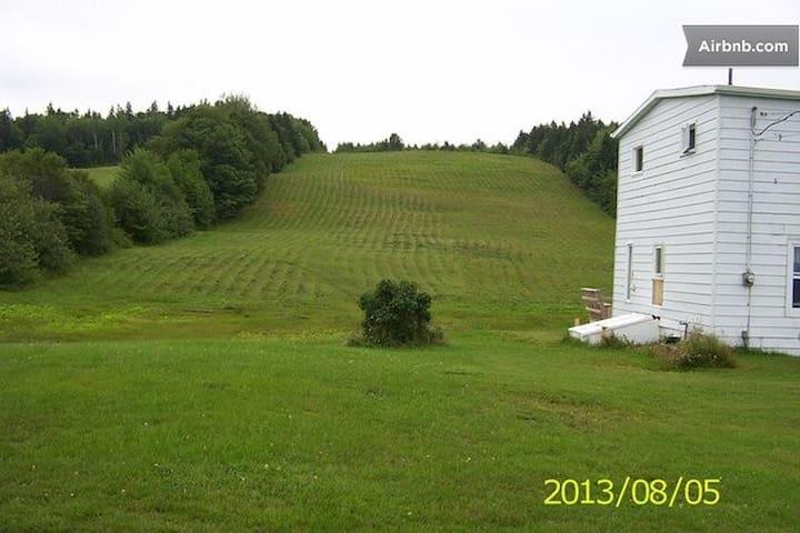Ladybug B&B Cape Breton: Field Room - Cape Breton - Bed & Breakfast