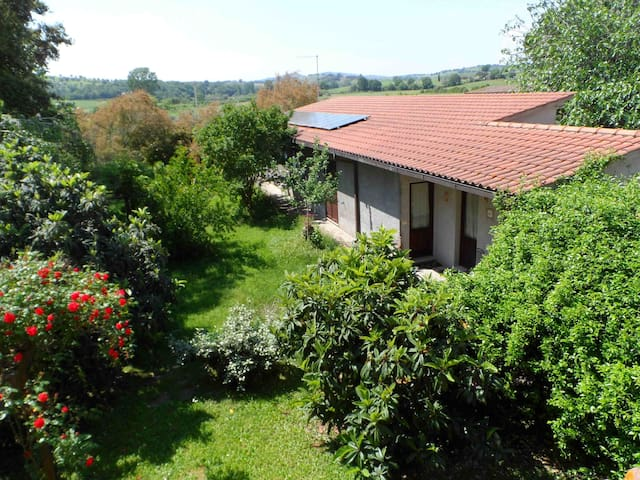 Lovely apartment for couples  in a farm - Magliano In Toscana - Flat