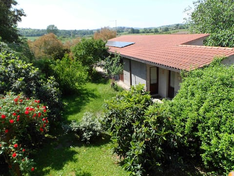Tuscany apartment between green hills and sea N