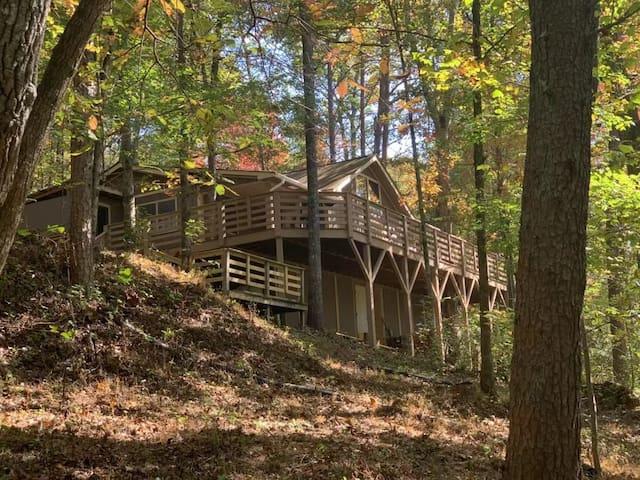 Amandas Treehouse