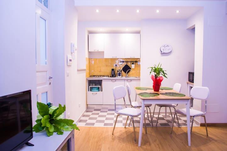 Casa Il Gallo nuovo alloggio nel centro di Viterbo