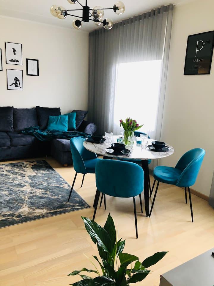 Luxurious Aisa13 Apartment in Pärnu,near the beach