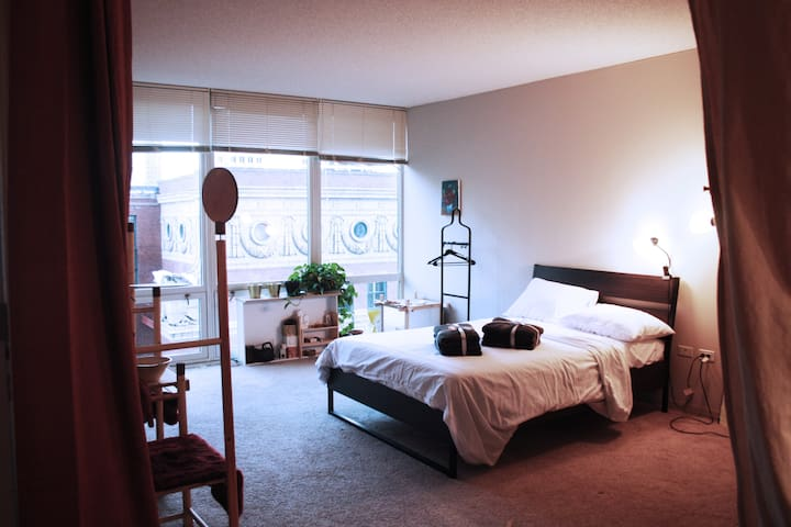- Gorgeous 1B1B Apartment in the Loop -