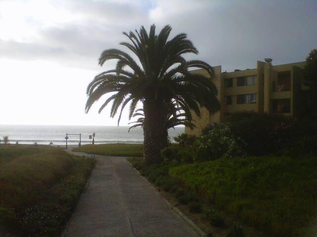 Departamento Dunas de Morrillos frente a la playa