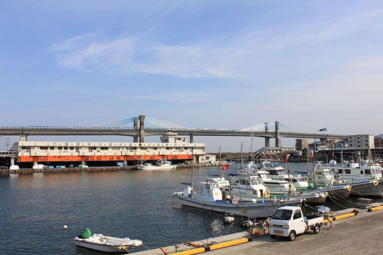 Odawara Fishing Port/Odawara Fish Market
