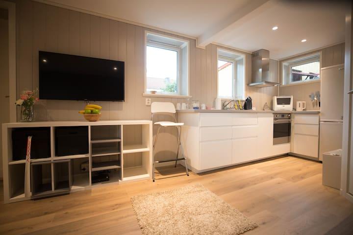 Studioapartment - TV and kitchen