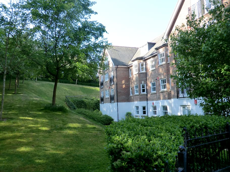 Guildford Apartments For Rent