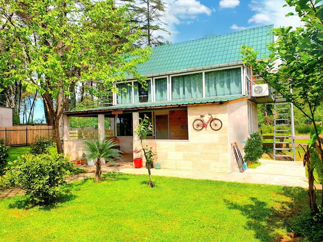 """The house in forest kaprovani """"Sesil S"""" 60m to sea"""