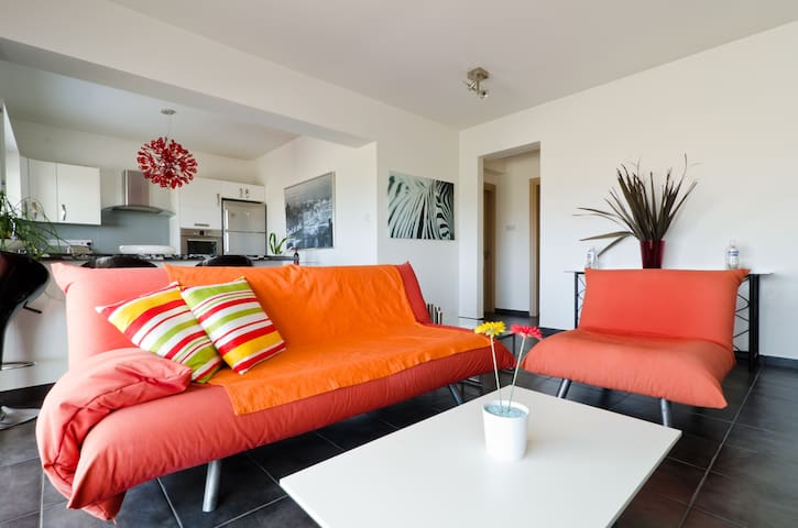Modern luxury apartment