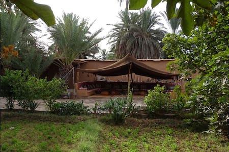 La maison nomades - Oasis Tighmert, Guelmim 1