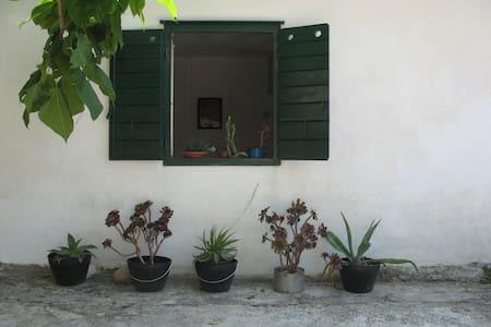STUDIO IN PITVE - Dalmatia - Jelsa