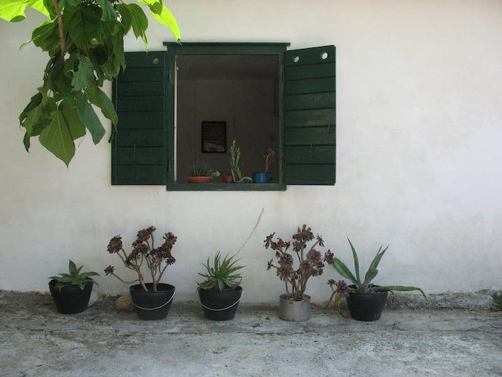 STUDIO IN PITVE - Dalmatia