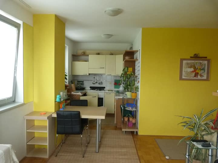 Excellently located APARTMENT