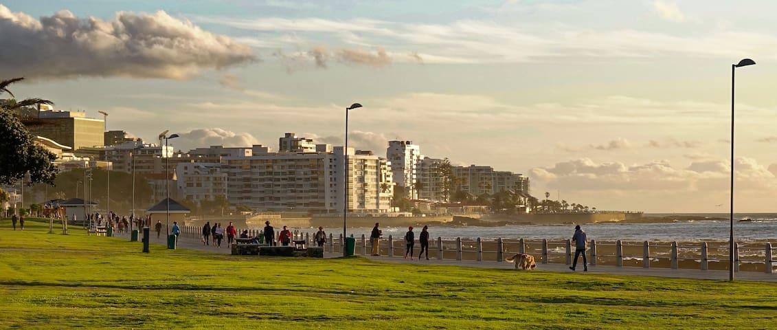 Promenade in walking distance