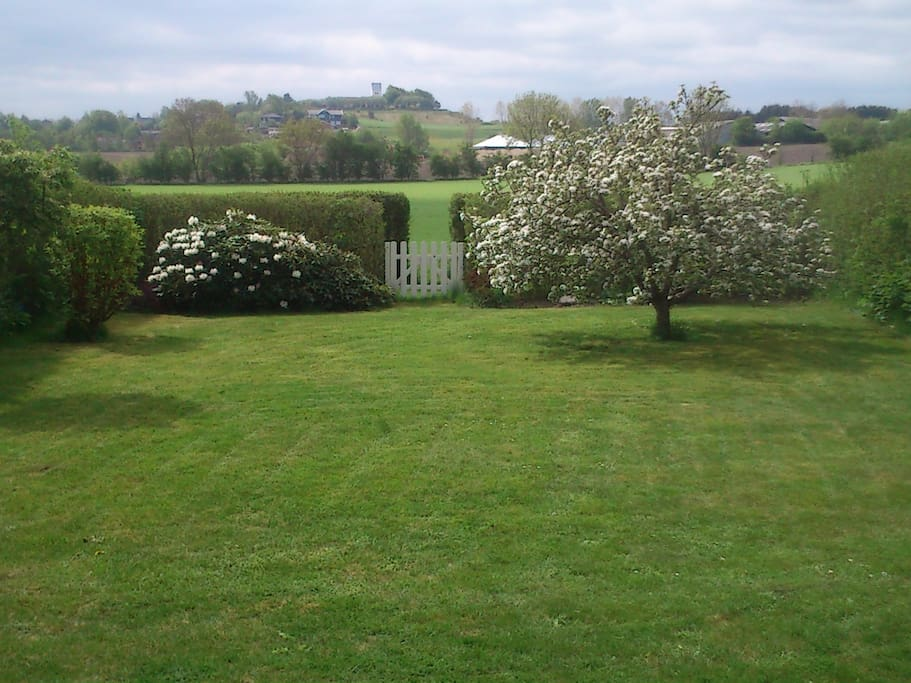 Lovely spacious garden with Quiet surroundings.