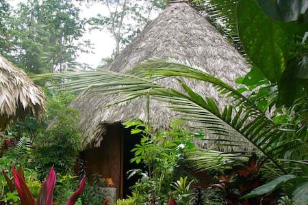 Indian Style Village in the Jungle!