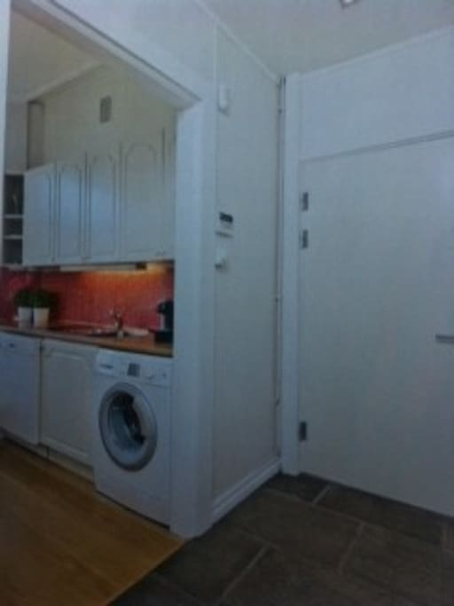 This picture shows the entrance door and the kitchen counter