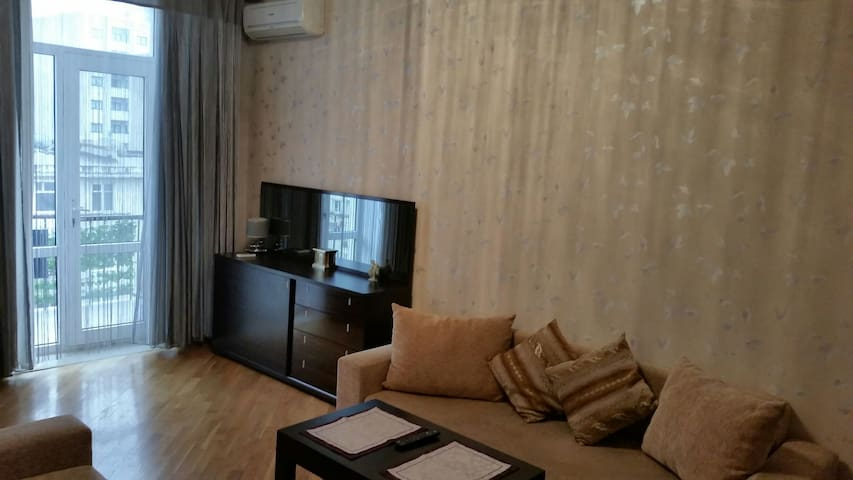 Apartment in the Baku city centre. - Baku - Apartament
