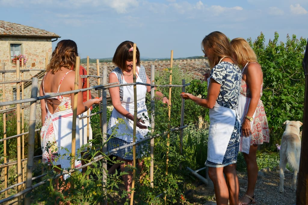 Cooking Class - picking vegetables in the garden
