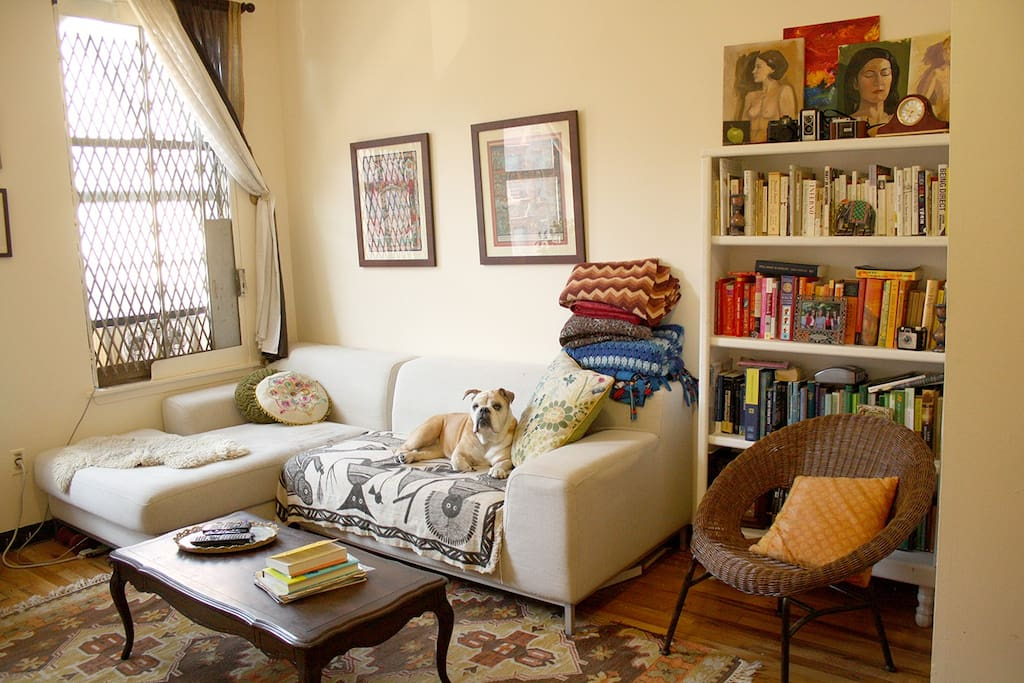 Another view of the inviting living area.  An illustrator lives here so you'll see plenty of art hanging on the walls!  Lulu the dog will not be on premise during your stay.