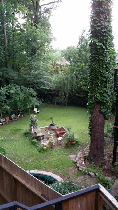 view of backyard from apartment