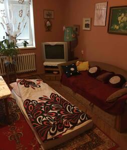 Lovely room in the heart of Zemplin region