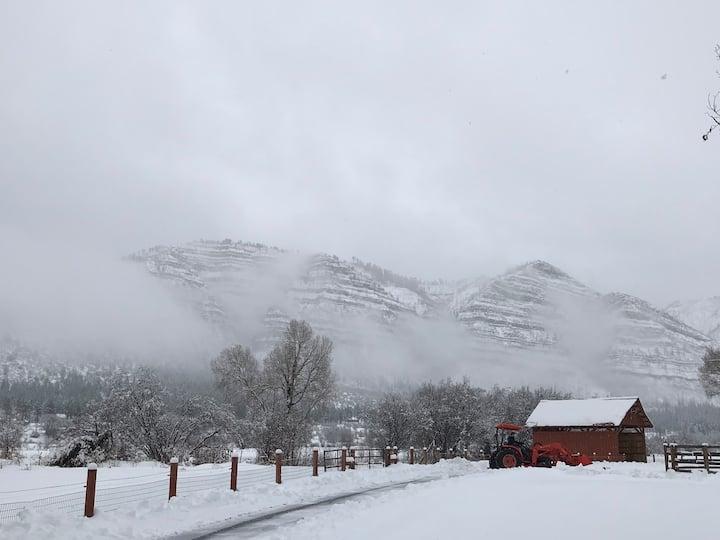 New, scenic private horse barn in  Animas Valley.
