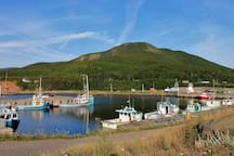 Pleasant Bay Harbour & Roberts Mountain, a great local hiking trail.