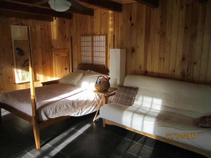 Ripshin Mountain Studio Apartment