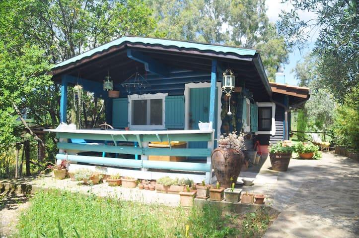 The Cottage - Castiglione della pescaia - Huis