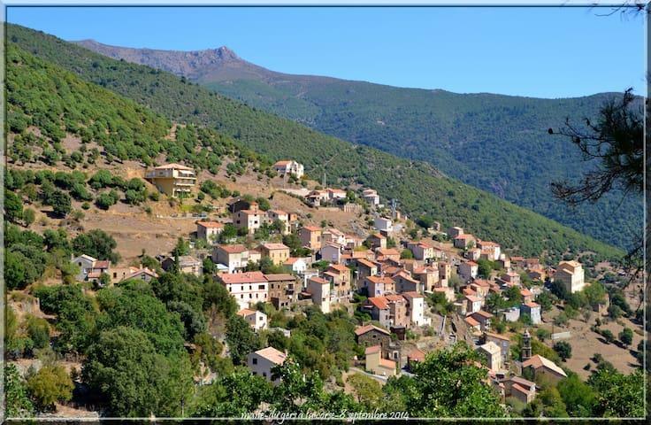 Location estivale studio à ASCO en Haute Corse - Asco - Apartemen