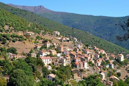 Location estivale studio à ASCO en Haute Corse - Asco - Apartamento