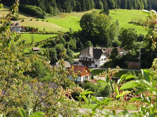 Gruppenwohnung 2 (19-34 Personen) - Bad Rippoldsau-Schapbach - Daire