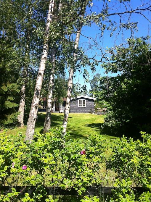 Sommerhuset set fra vejen